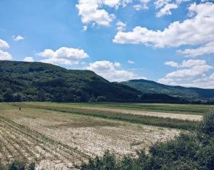 Landschaft Serbien